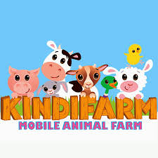 bubble-soccer-on-kindifarm